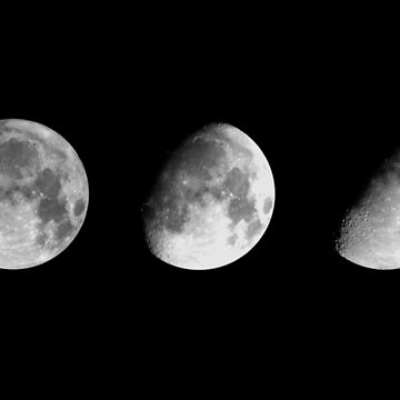 Three Phases by JennHolton