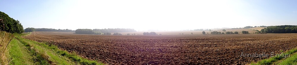 Lincolnshire field by Annabelle Evelyn