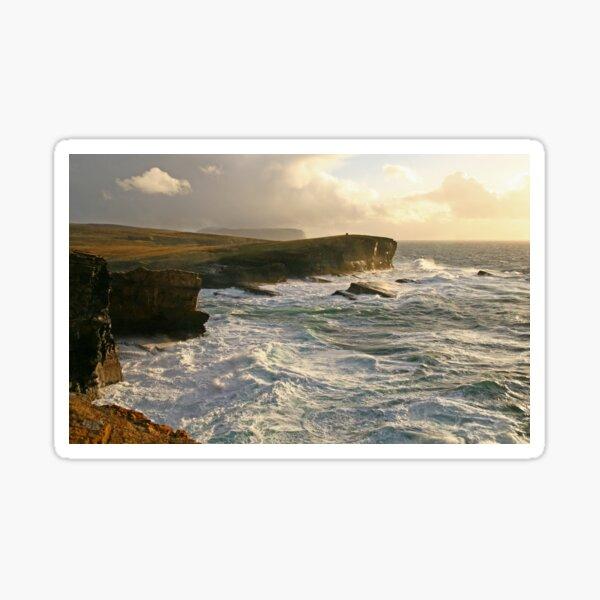 Wild Ocean Sticker