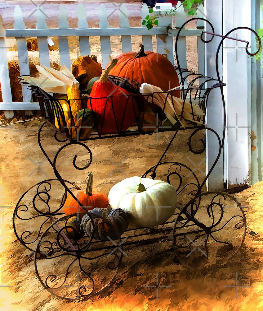 Pumpkins On Display by CarolM