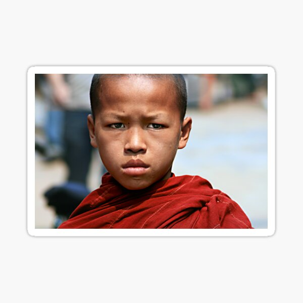 Young Monk Sticker