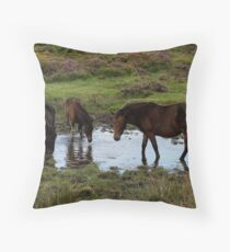 Three Dartmoor Ponies At Watering Hole Late Summer 2011 Throw Pillow