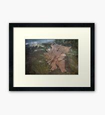 Imagination Blossoms Framed Print