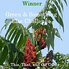 Challenge Winner - Green & Something Else by quiltmaker