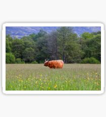 Spring In The Highlands Sticker