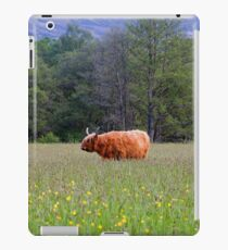 Spring In The Highlands iPad Case/Skin