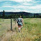 Field by Cole Pickup