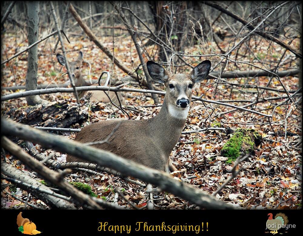Happy Thanksgiving!! by jodi payne