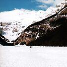 Lake Louise by Cole Pickup