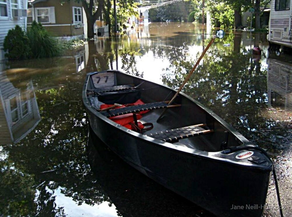 Did You Park Your Canoe In The Middle Of The Street? by Jane Neill-Hancock