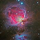 Orion Nebula by Cole Pickup