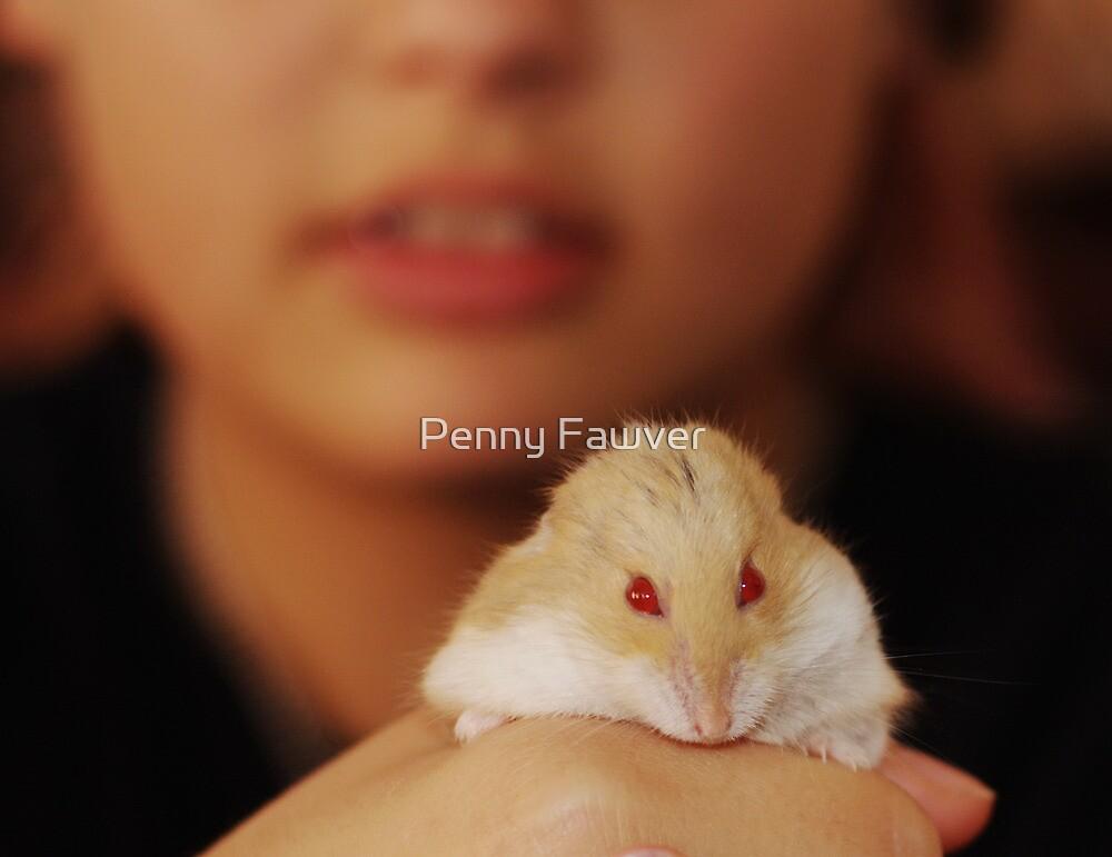 Meet Gilbert by Penny Rinker