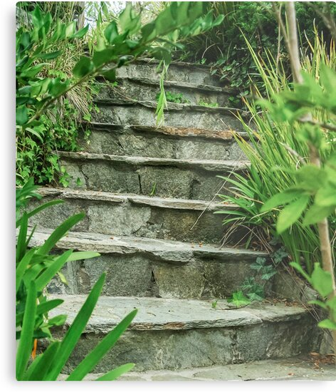 The Secret Stairs by Heather Friedman