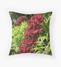 Exotic flower of Doryanthes palmeri. Spear lily, -agaveaceae- Queensland native. Throw Pillow