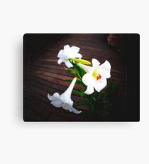 White Lilly Family Canvas Print