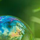 Bubble by Jill Ferry