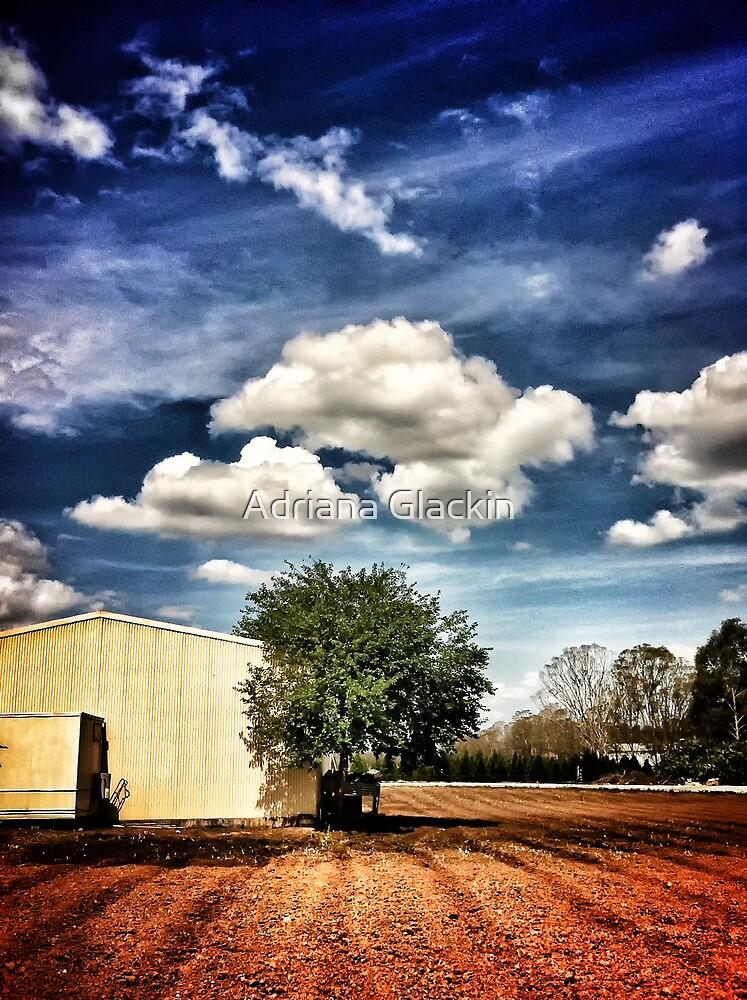 ~ the country farm ~ by Adriana Glackin