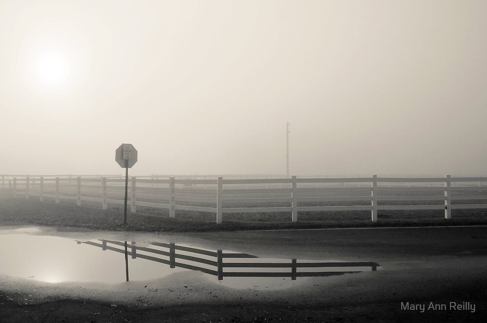 Intersection by Mary Ann Reilly