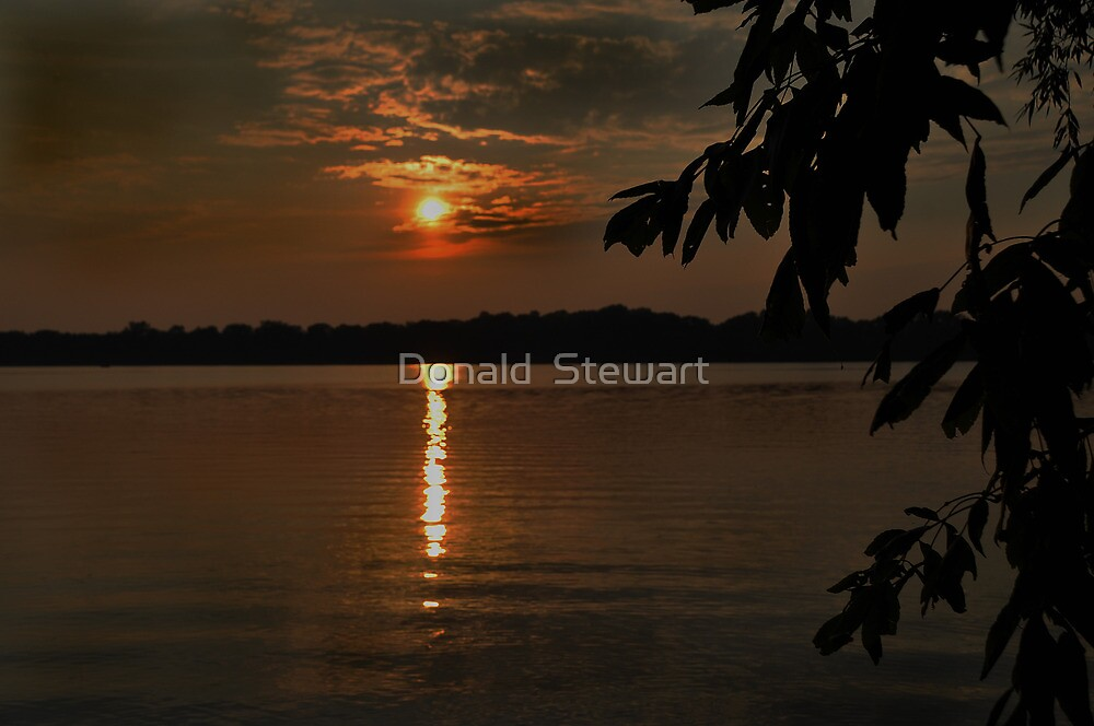 Lake Sunset by Donald  Stewart