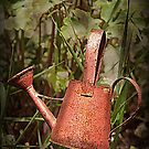 The Watering Can by Heather Crough