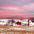 Winter on the Farm by Randy Branham