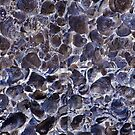 Inverted Oyster Shells Abstract by pjwuebker