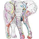 Elephant by caseysplace