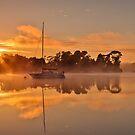 Misty river sunrise by fotosic