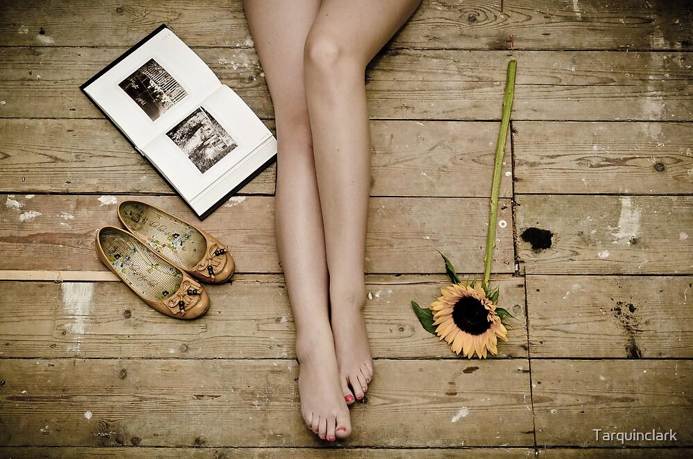 Sunflower by Tarquinclark