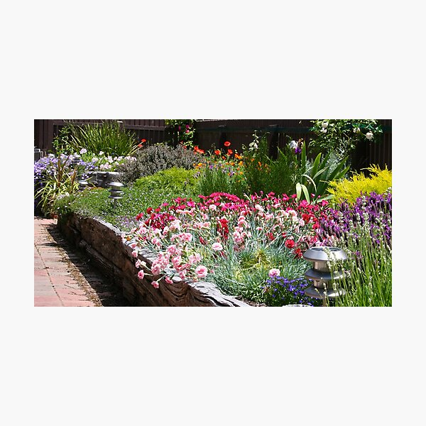 Spring border  Photographic Print