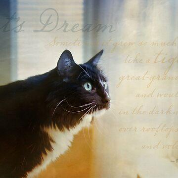 Cat's Dream by LynnStarner