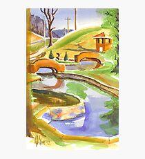 Pools in Brigadoon Photographic Print