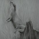 The Otters by Lynn Hughes