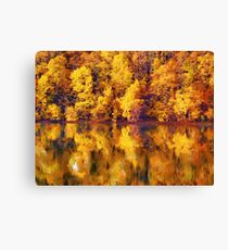 full of yellows Canvas Print