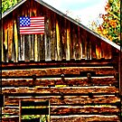 Pioneer Village by leighannc
