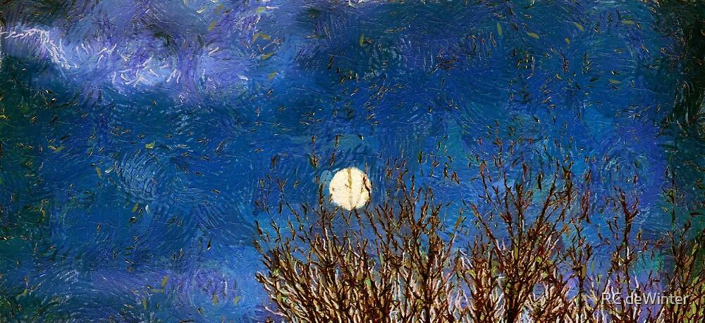 Colorado Moon by RC deWinter