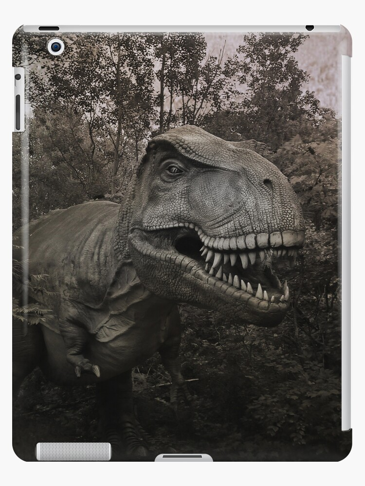 Dino by swaby