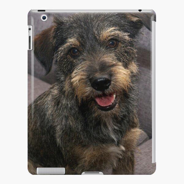 Scoobie iPad Snap Case