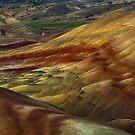 Mars on Earth by Thomas Dawson