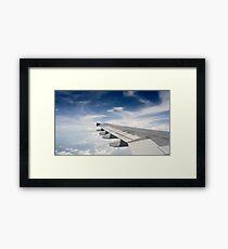 Fly wing Framed Print