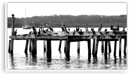 Party Time On the Pier by AuntDot