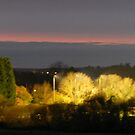 Horsham after Sunset by carolhynes
