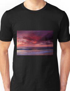 Phoenix Flying Unisex T-Shirt