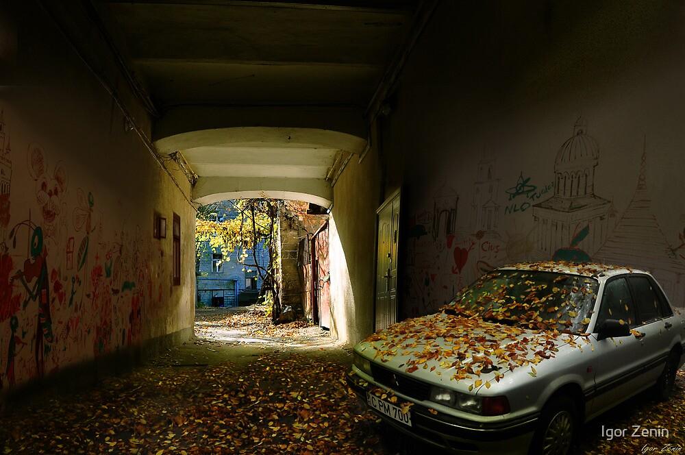 Fallen Leaves by Igor Zenin