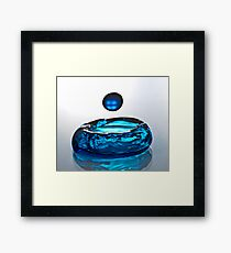 Water Bowl Framed Print