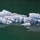 Alaska Glacier Ice by Bill D. Bell