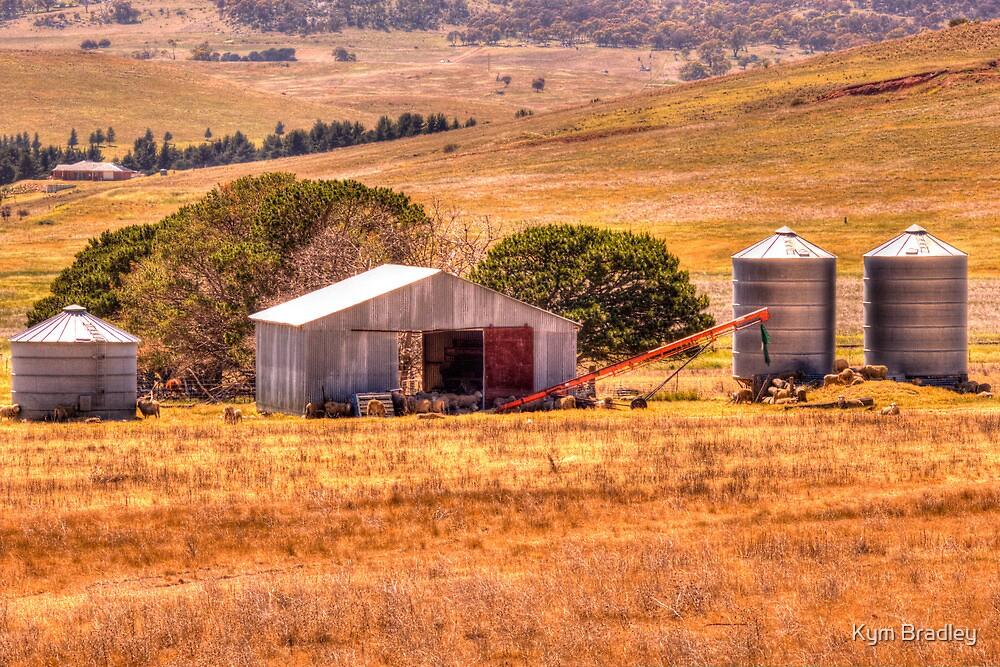 Farm Life Rural NSW Monaro Highway by Kym Bradley