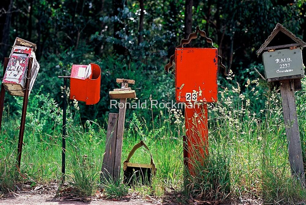BUSH LETTER BOXES by Ronald Rockman