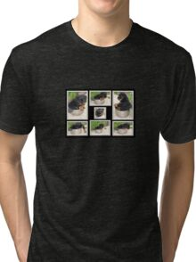 Collage Of Puppy Rottweiler Sitting In Food Bowl Tri-blend T-Shirt