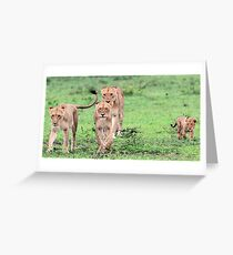 Can i come along with you? Greeting Card